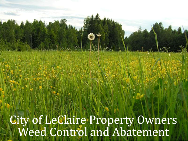 weed control and abatement
